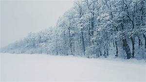 Huge Snowfall Set to Hit Mississauga This Weekend ...