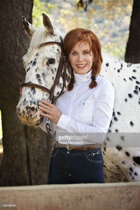 Stefanie Powers At Home Shoot Photos and Premium High Res ...