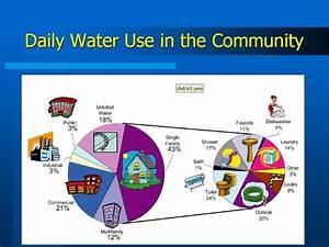 Community Daily