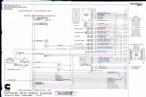 Gallery Of N14 Cummins Ecm Wiring Diagram Sample