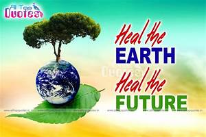 best environment day slogans and quotes hd wallpapers ...