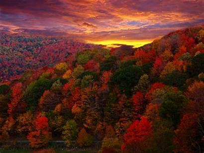 Sunset Mountains Trees Autumn Desktop Backgrounds Wallpapers