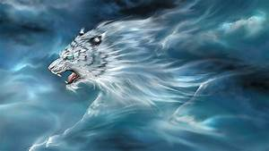 White Tiger Cloud Hd Wallpapers : Wallpapers13.com