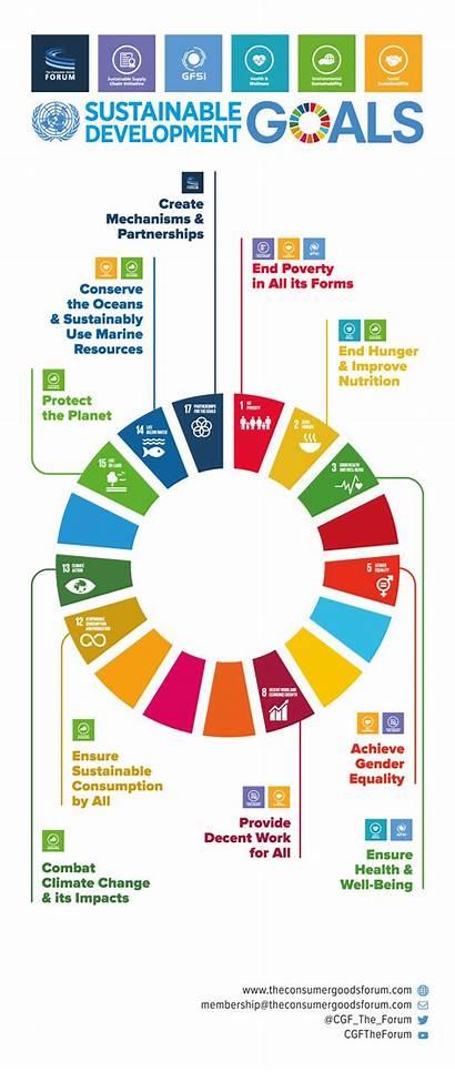Sustainable Development Goals Infographic Education Sdg Infographics