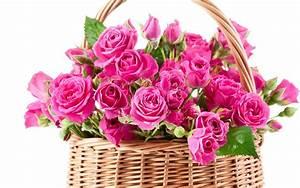 Bouquet pink beautiful flowers roses wallpaper   1920x1200 ...