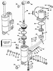 Evinrude Power Trim  Tilt  U0026quot B U0026quot  Model Number Suffix Only