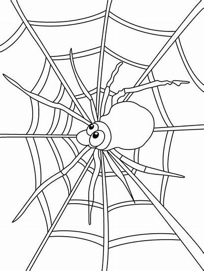 Spider Coloring Web Insect Pages Colorluna Colouring