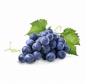 Achat Pied De Vigne Raisin De Table : le produit du mois le raisin ~ Nature-et-papiers.com Idées de Décoration
