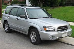 Download   100 Mb  1993 - 2004 Subaru Forester