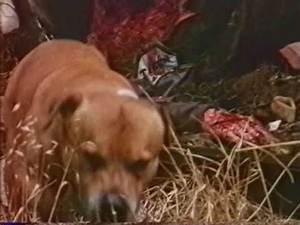 Q Film Complet Youtube : mutator 1989 vf film complet youtube ~ Medecine-chirurgie-esthetiques.com Avis de Voitures