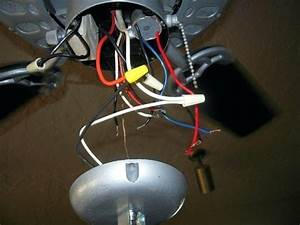 How To Wire A Ceiling Fan And Light  U2013 Archetyped Co