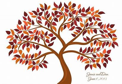 Tree Fall Autumn Clipart Drawing Trees Guest