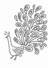Feather Coloring Bird Printable Getcolorings Pag sketch template