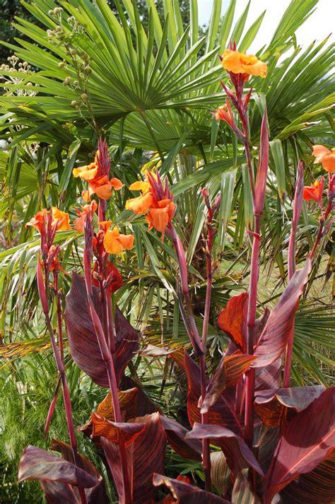 lakemount garden gallery
