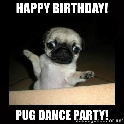 Birthday Pug Meme - happy birthday pug images birthday pug dog happy birthday greeting card 203 moggies and more