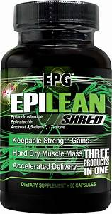 Epilean Shred Review