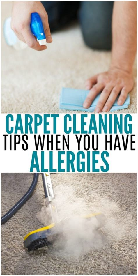 carpet cleaning tips best carpet cleaning tips when you have allergies