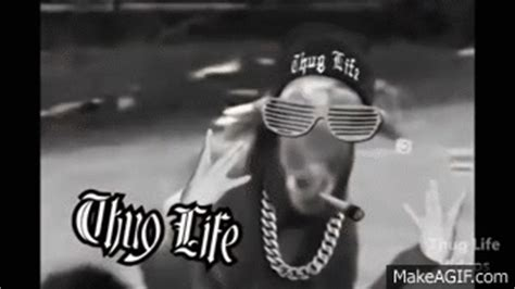 goat thug life    gif