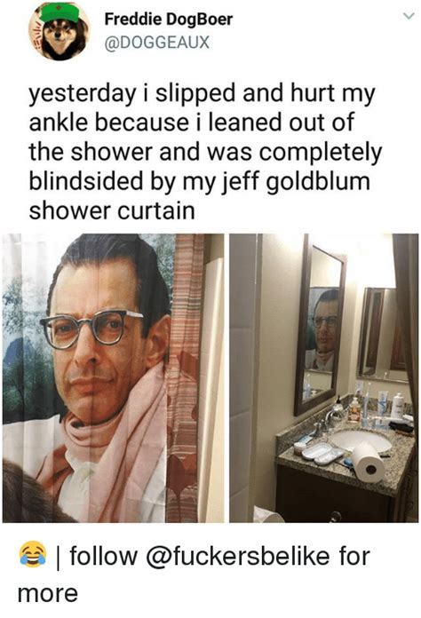Jeff Goldblum Memes - 25 best memes about freddie freddie memes