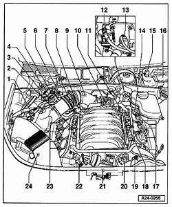 Diagram  1985 Audi 5000 System Wiring Diagram Full