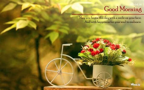 good morning  small small bicycle basket  awaysome