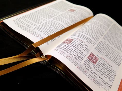 Schuyler Canterbury Kjv Dark Brown Goatskin Bible