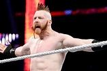 Sheamus added to the WWE Royal Rumble match - Cageside Seats