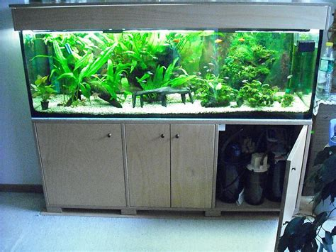 projekt quot anderswelt quot 500 liter aquarium forum