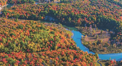 manistee river valley fall color  mynorthcom