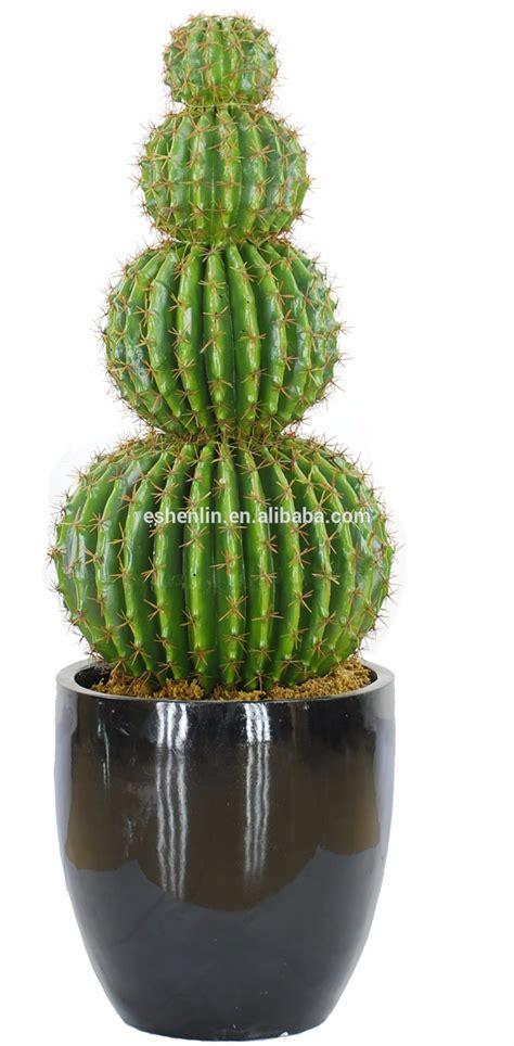 grand cactus plantes d int 233 rieur artificielle en plein air int 233 rieur cactus arbres cactus
