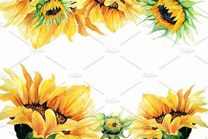 Clipart Watercolor Sunflowers