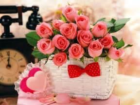s day roses 玫瑰花花语有哪些 花语百科