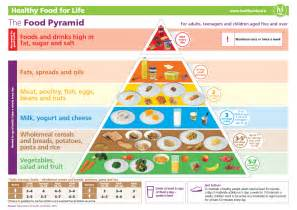 2017 Healthy Food Pyramid