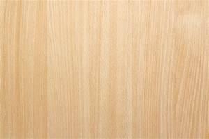 Natural Beech Wood Background Texture - Safitri Jati Furniture
