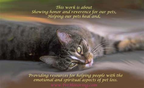 Pet Cat Death Poem