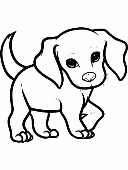 Easy Drawing Puppy Coloring Pages Drawings Dog
