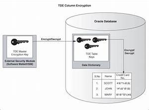 Securing Stored Data Using Transparent Data Encryption