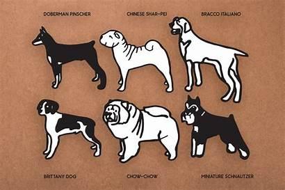 Dog Svg Breeds Cut Doodles Bundle Cricut
