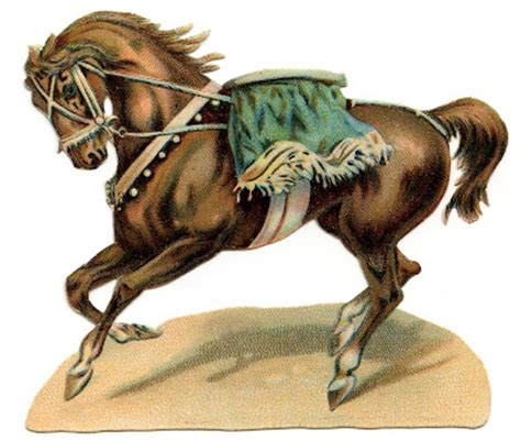 vintage circus graphics horse  trainer  graphics