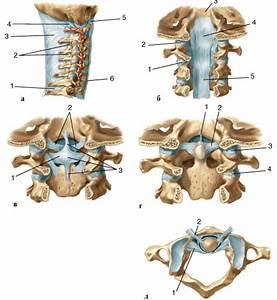Мазь от боли в мышцах и суставах ног