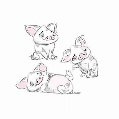 Moana Disney Pua Fanart Sketches Piggy Drawings