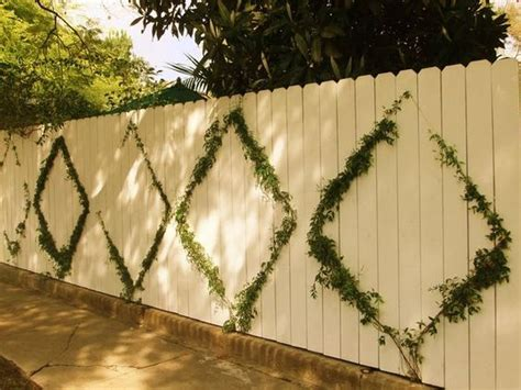 Climbing Vine + Tensioned Wire + Fence Landscape