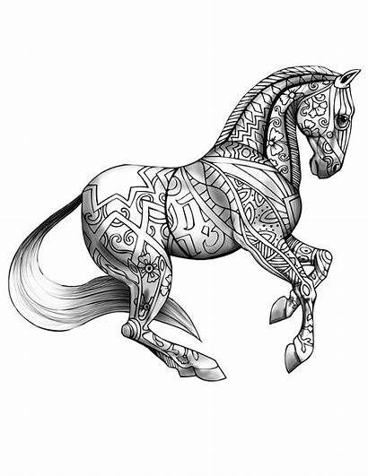Coloring Horse Adults Pages
