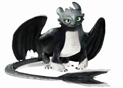 Night Ocs Drawing Dragon Oc Dragons Train