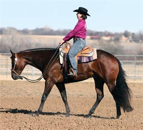pleasure western horse horses correct training riding tips rider horsemanship jog trainer horseandrider quarter tack american gaits put lope westerns