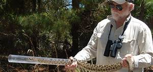 Herpetologist Harry Greene To Close Discover Science