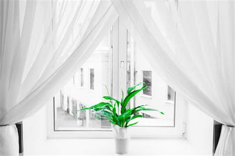 what is the difference between drapes and curtains what s the difference between curtains and drapes how to