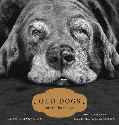 Old Dogs Book By Gene Weingarten Michael S Williamson