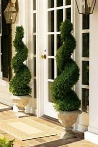 """Swirl topiaries. What a beautiful """"welcome home ..."""