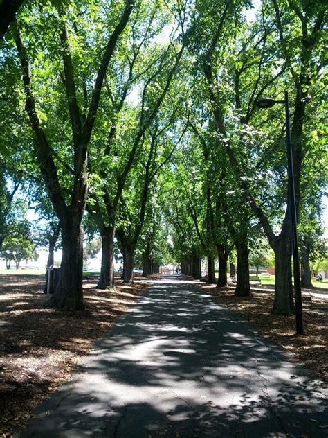 the reserve at garden lake coburg lake reserve garden locations